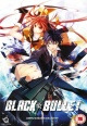 Black Bullet: Complete Season Collection [Z2] (Boxsets)